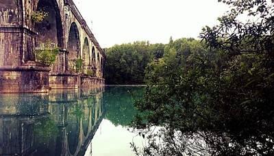 #gorizia #isonzo #bridge #nature #trees Original