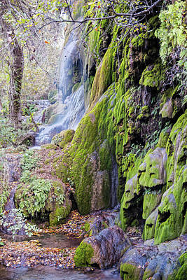 Photograph - Gorman Falls At Colorado State Park II - San Saba Texas Hill Country by Silvio Ligutti