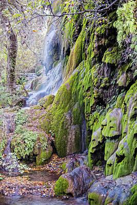 Photograph - Gorman Falls At Colorado State Park II - San Saba Texas Hill Country by Silvio Ligutti