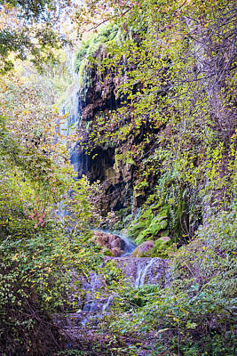 Photograph - Gorman Falls At Colorado State Park IIi - San Saba Texas Hill Country by Silvio Ligutti