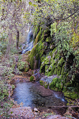 Photograph - Gorman Falls At Colorado State Park - San Saba Texas Hill Country by Silvio Ligutti