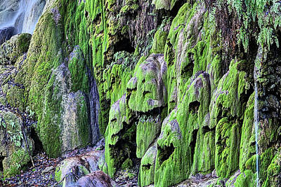Photograph - Gorman Falls by JC Findley