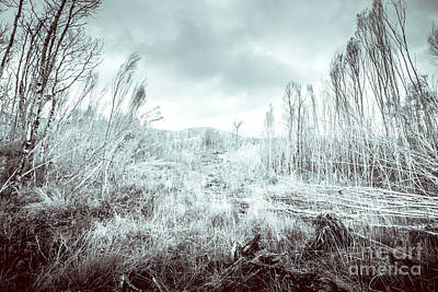 Gormanston Snowscape Art Print