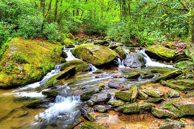 Photograph - Goshen Creek Spring by Dale R Carlson