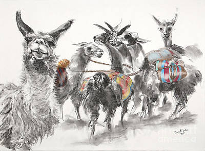 Llama Drawing - Gossip Circle by Carol Jobe