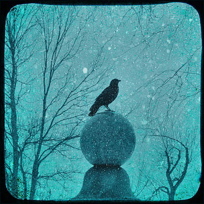 American Crow Photograph - Goth Snow Globe by Gothicrow Images
