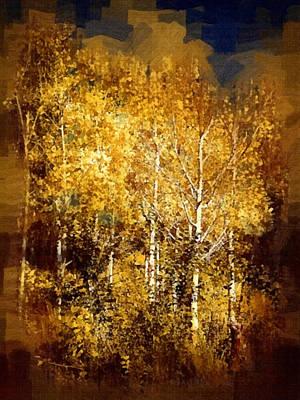 Photograph - Gothic Aspen Trees by Joseph Frank Baraba