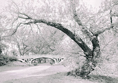 Gothic Bridge Photograph - Gothic Bridge 28 by Jessica Jenney