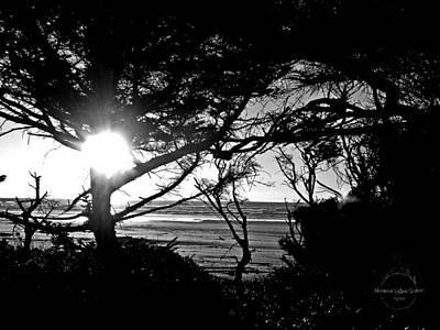 Photograph - Gothic Forest By The Sea by Absinthe Art By Michelle LeAnn Scott