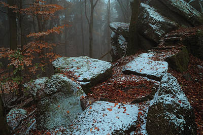 Photograph - Gothic Rocks. In Mysterious Woods by Jenny Rainbow