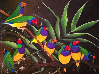 Gouldian Finch Rainbow Art Print by Una  Miller