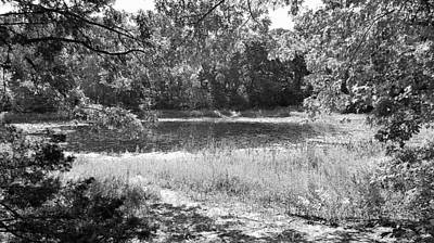 Photograph - Gould's Pond B W by Rob Hans