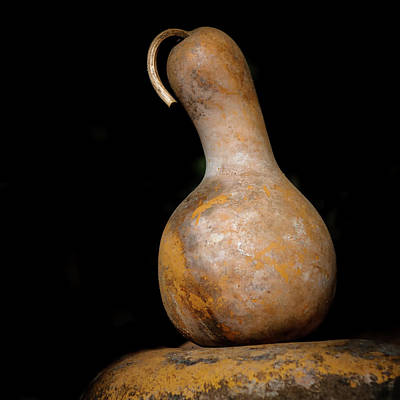 Gourds Photograph - Gourd by Joseph Smith