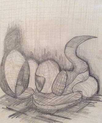Drawing - Gourds by Erika Chamberlin