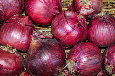 Photograph - Gourmet Red Onions by Tikvah's Hope
