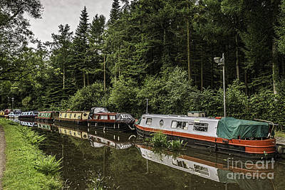 Photograph - Goytre Wharf 3 by Steve Purnell