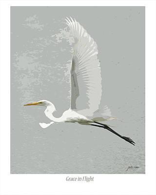 Grace In Flight Art Print