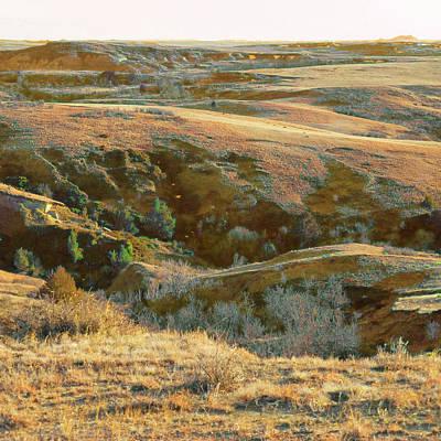 Photograph - Graceful April Grasslands by Cris Fulton