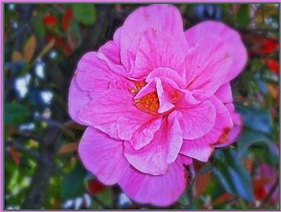 Graceful Blossom Art Print by Mindy Newman