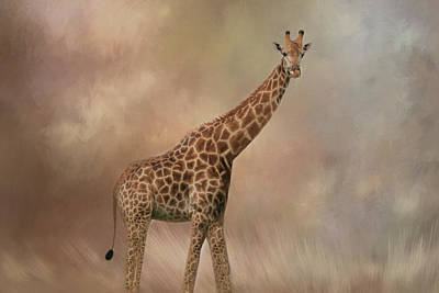 Photograph - Graceful Giraffe by Kay Kochenderfer