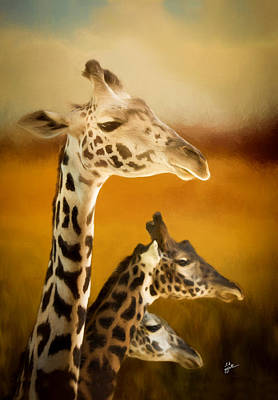 Photograph - Graceful Giraffes by TK Goforth