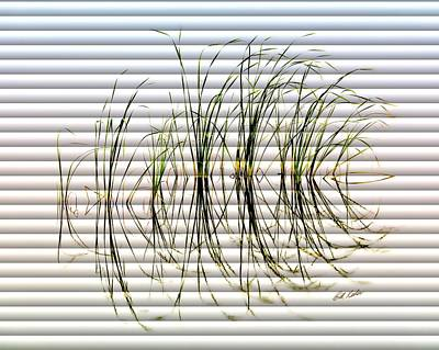 Photograph - Graceful Grass - The Slat Collection by Bill Kesler