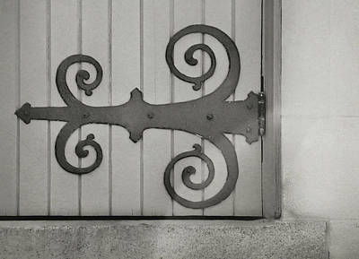 Photograph - Graceful Hinge by JAMART Photography