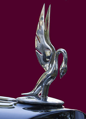 Photograph - Graceful Hood Ornament by Jean Noren