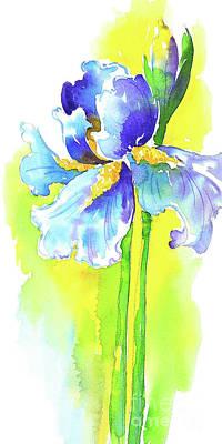 Wall Art - Painting - Graceful Iris by Svetlana Titarenko