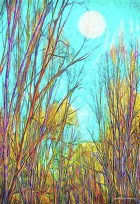 Digital Art - Graceful Moonlit Trees by Joel Bruce Wallach