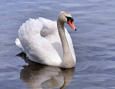 Photograph - Graceful Peace by Joanne Brown