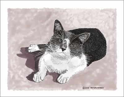 Reptiles Drawings - Gracie  by Jack Pumphrey