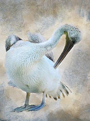 Digital Art - Graciously Pelican by Mihaela Pater