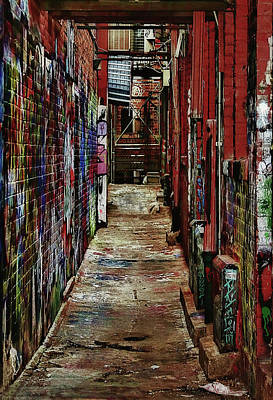Photograph - Graffiti Alley 13 X 19 by Pat Cook