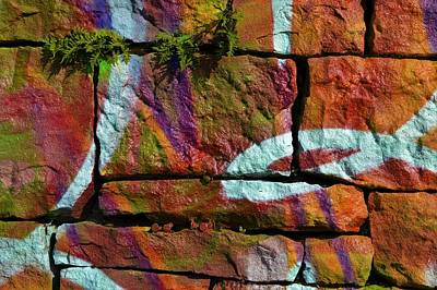 Photograph - Graffiti And Ferns 1 by Cheryl Hoyle