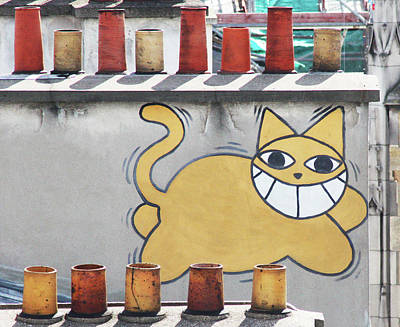 Photograph - Graffiti Cat by Mary Castellan