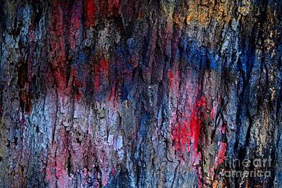 Photograph - Graffiti-covered Tree by Ben Schumin