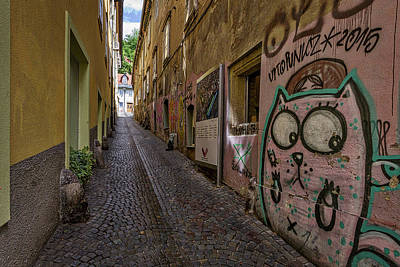 Photograph - Graffiti In The Alley - Slovenia by Stuart Litoff