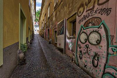 Photograph - Graffiti In The Alley - Slovenia by Stuart Litoff
