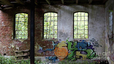 Photograph - Graffiti On The Walls Of An Old Factory  by Eva-Maria Di Bella