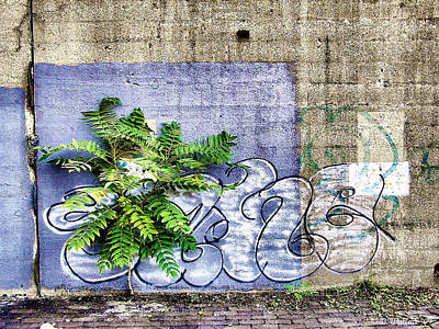 Vandalize Photograph - Graffiti Plant by Brian Wallace