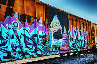 Graffiti Riding The Rails Art Print by Bob Christopher