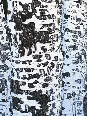 Photograph - Graffitied Bark No. 1 by Sandy Taylor