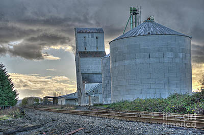 Photograph - Grain Elevator by Craig Leaper