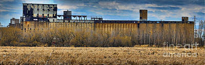 Photograph - Grain Elevators by Darleen Stry