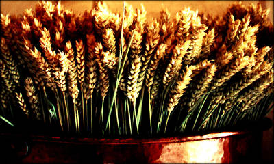 Photograph - Grain In Copper Pot by Susie Weaver