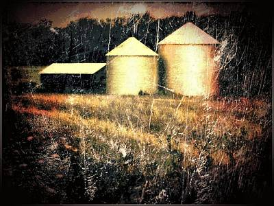 Photograph - Grain Storage Detail by Michael L Kimble