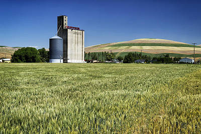 Photograph - Grainery And Wheat In Palouse Wa Dsc05126 by Greg Kluempers