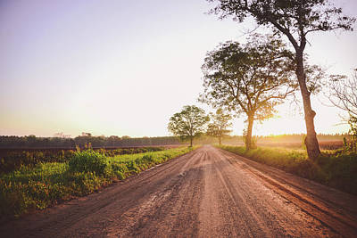 Photograph - Gramma's Dirt Road by Tracie Moore
