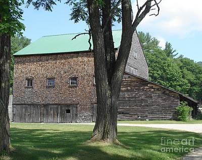 Photograph - Grammie's Barn Through The Trees by Kerri Mortenson
